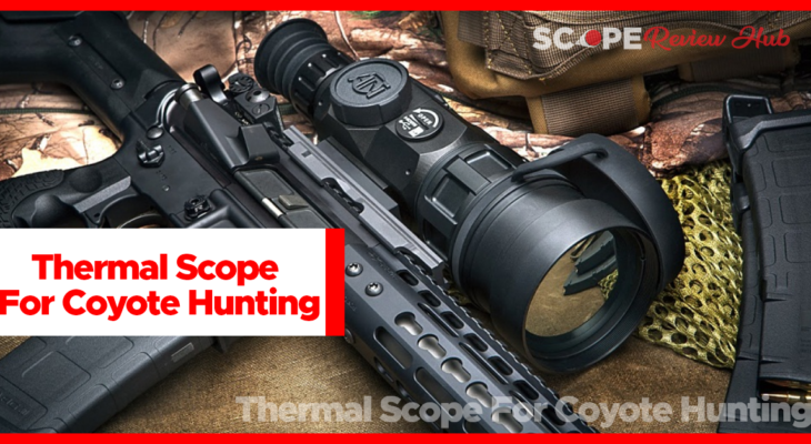 Thermal scope for coyote hunting